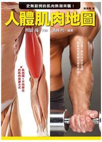 人體肌肉地圖:史無前例的肌肉熱潮來襲!